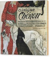 Clinique Cheron - Vintage Clinic Advertising Poster Wood Print