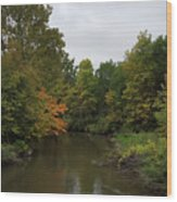 Clinton River In Autumn Cloudy Day Wood Print