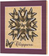 Clipper Butterfly Pin Wheel Wood Print