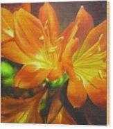 Clivias Wood Print