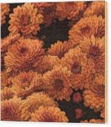 Clockwork Orange Wood Print