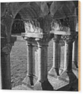Cloister At Cong Abbey Cong Ireland Wood Print