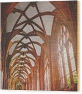 Cloisters Of Basel Munster Switzerland  Wood Print