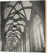 Cloisters Of Basel Munster Switzerland In Black And White  Wood Print