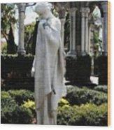Cloisters Statue Wood Print by Heidi Hermes