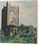 Clonony Castle Wood Print