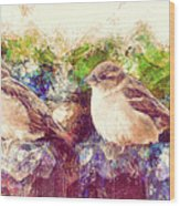 Close Encounters Of The Bird Kind Wood Print