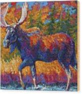 Close Range Wood Print