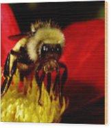 Close Up Bee Wood Print