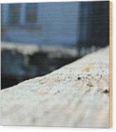 Close Up Bench Wood Print