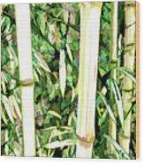 Close Up Big Fresh Bamboo Wood Print