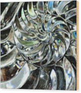Close-up Of Glass Chambered Nautilus Wood Print