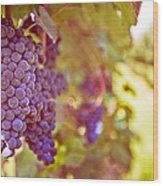 Close Up Of Grapes Wood Print