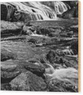 Close Up Of Reedy Falls In South Carolina B W Wood Print