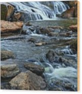 Close Up Of Reedy Falls In South Carolina Wood Print