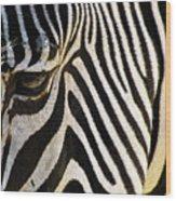 Close Up Zebra Wood Print