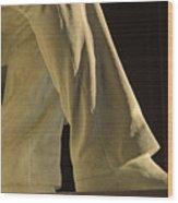 Closeup Detail Of Lincoln Memorial Wood Print