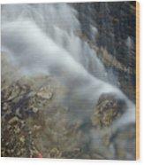 Closeup Maple Leaf And Decew Falls, St Wood Print by Darwin Wiggett