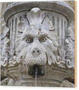 Closeup Of A Public Fountain In Dubrovnik Croatia Wood Print