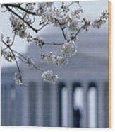 Closeup Of Cherry Blossoms Wood Print