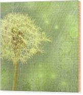 Closeup Of Dandelion With Seeds Wood Print