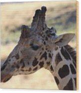 Closeup Of Giraffe Wood Print