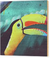 Closeup Portrait Of A Colorful And Exotic Toucan Bird Against Blue Background Nicaragua Wood Print