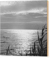 Cloud Circle Over Lake Pontchartrain Wood Print