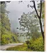 Cloud Forest Wood Print
