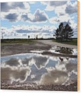 Cloud Reflection In Puddle Wood Print