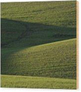 Cloud Shadows On New Growing Crop Wood Print