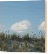 Cloud Trio And Dunes - Huntington Beach Sc Wood Print