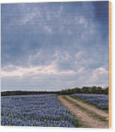 Cloud Vortex Over Bluebonnets At Muleshoe Bend Recreation Area - Spicewood Texas Hill Country Wood Print