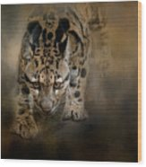 Clouded Leopard On The Hunt Wood Print