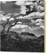 Clouds And A Tree Baw Wood Print