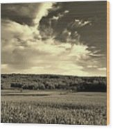 Clouds And Cornfields Wood Print