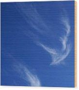 Clouds In Flight Wood Print