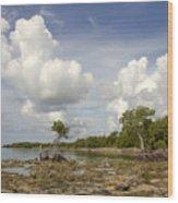 Clouds In The Keys 2 Wood Print