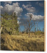Clouds Over Mesa Verde Wood Print