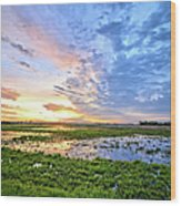 Clouds Over The Marsh 4 Wood Print