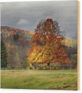 Clouds Part Over Marsh Billings-rockefeller Nhp Wood Print