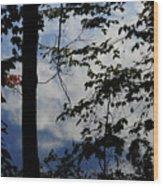 Clouds Tree Water Wood Print