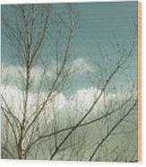 Cloudy Blue Sky Through Tree Top No 1 Wood Print