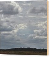 Cloudy Day At Dinenr Island Ranch Wood Print