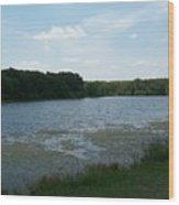 Cloudy Day At The Lake  Wood Print