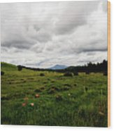 Cloudy Meadow Wood Print