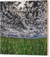 Cloudy Sky's Grassy Field Wood Print