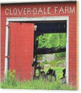 Clover Dale Farm Wood Print