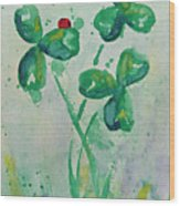Clover Patch Wood Print