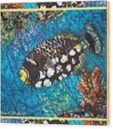Clown Triggerfish-bordered Wood Print